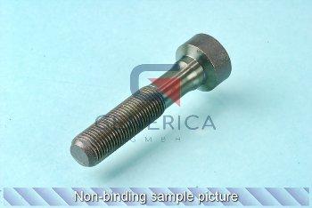 Schraube M10x1x48